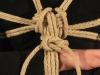 Chest-Shoulder-2008-03-08-0535.jpg