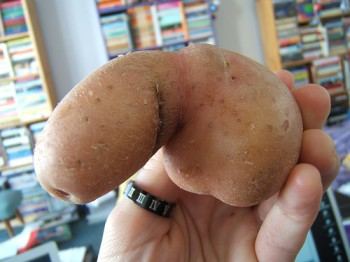 dick-tater